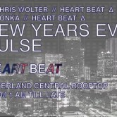 NYE Pulse @ Silverland Central Rooftop